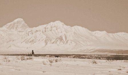 Quedan 20 días para 2007 Iditarod